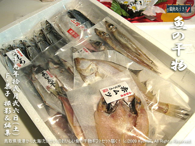 12/26(土)【魚の干物】鳥取県境港から大海(だいかい)のおいしい魚の干物ギフトセット届く! (c)2009 KyokoF. All Rights Reserved.@キャツピ&めん吉の【ぼろくそパパの独り言】 ▼マウスオーバー(カーソルを画像の上に置く)で別の画像に替わります。     ▼クリックで1280x960画像に拡大します。
