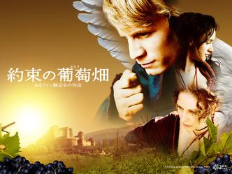 映画「約束の葡萄畑」タイトル画像B @東北新社(C)2009 Ascension Film Kortex Acajou Films ▼クリックで1280×960ピクセルに拡大します。
