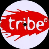 TRIBE RECORDINGS