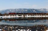 雪の貫川内湖を行くコンテナ貨物列車