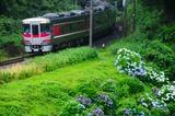仕立トンネルを出たキハ189系