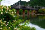 吉井川橋梁を渡る115系
