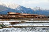 雪の比良山系をバックに駆ける485系「雷鳥」