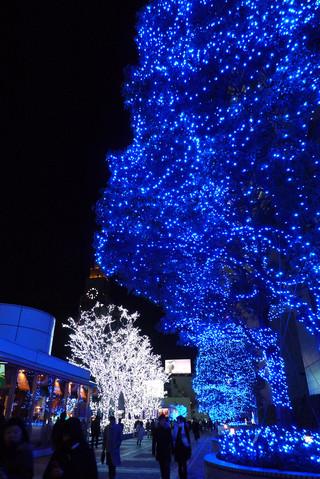 東京・新宿のクリスマスイルミネーション