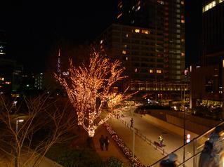 赤坂・東京ミッドタウンのクリスマスイルミネーション