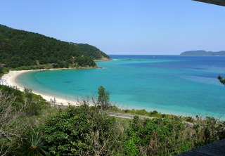 初めての奄美大島1泊2日の旅 ネイティブシー奄美(Native Sea AMAMI)