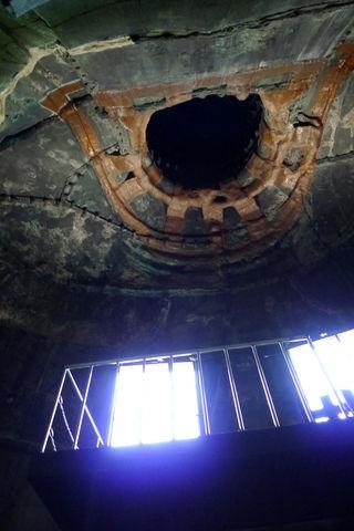 鎌倉の鶴岡八幡宮の大銀杏倒壊跡と高徳院(鎌倉の大仏)