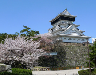 小倉城と桜
