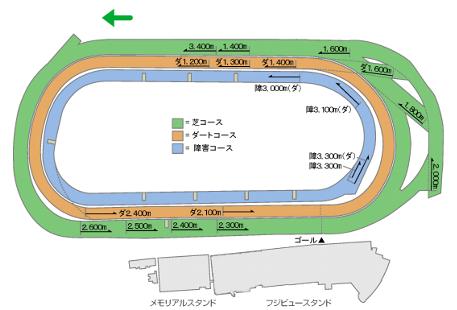 東京競馬場コース平面図