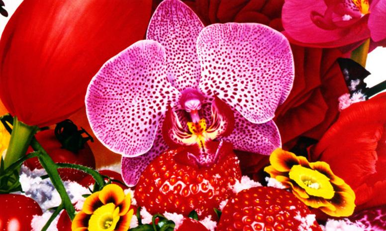 *天上的色,長在地上的花:用五個觀點來看 蜷川實花 (NinagawaMika) 6