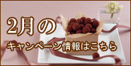 7万円からの婚活!ジュブレのバレンタインキャンペーン実施中!!